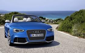 Обои Audi, Море, Синий, Кабриолет, Лого, Капот, Фары