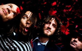 Обои Red Hot Chili Peppers, Anthony Kiedis, Michael Balzary, Flea, John Frusciante, Chad Smith
