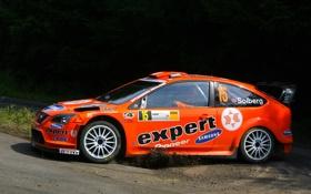 Картинка Ford, Оранжевый, Focus, WRC, Rally, Ралли, Фокус