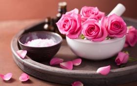 Обои цветы, розы, лепестки, натюрморт, розовые цветы