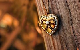 Обои камни, дерево, сердце, размытость, кулон, цепочка, сердечко