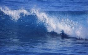 Картинка море, природа, река, волна