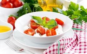 Обои помидоры, салат, базилик, моцарелла