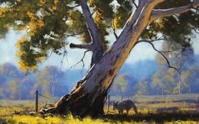 Обои ветки, природа, дерево, животное, забор, арт, кенгуру