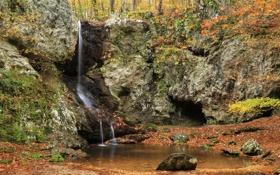 Обои США, камни, ручей, лес, Georgia, мох, Paulding