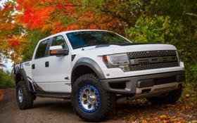 Картинка Ford, большой, автомобиль, форд, пикап, F-150, SVT Raptor