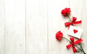 Обои цветы, лента, сердечко, бантик, открытка, гвоздики