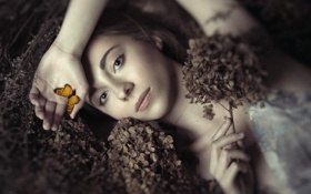 Обои бабочка, девушка, Ania