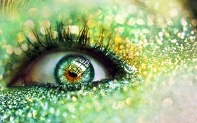 Обои глаз, обои, макро