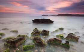 Картинка закат, камни, скалы, небо, облака, водоросли, море