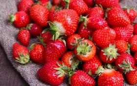 Обои ягоды, клубника, strawberry, fresh berries