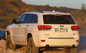 Обои машина, внедорожник, вид сзади, Jeep, Grand Cherokee, Overland