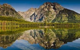 Обои лес, горы, озеро, отражение
