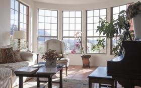Обои комната, мебель, окна