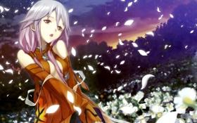 Картинка небо, девушка, звезды, цветы, ночь, аниме, лепестки