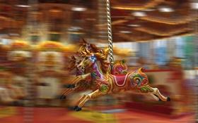 Обои движение, яркие, аттракцион, лошадки, карусели