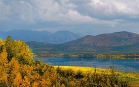 Картинка осень, лес, небо, деревья, горы, тучи, природа
