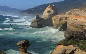 Картинка море, волны, небо, горы, птицы, шторм, скалы