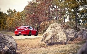 Картинка дорога, лес, небо, деревья, красный, 911, 997