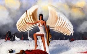 Картинка воины, фантастика, небо, сражение, белое, волосы, крылья