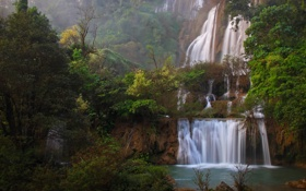 Обои листья, джунгли, водопады, деревья, природа