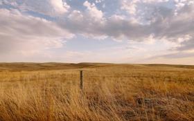 Обои ограда, облака, поле, небо, забор