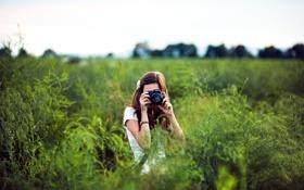 Картинка Небо, Девушка, Трава, Фотоаппарат, Брюнетка