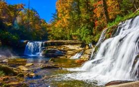 Обои осень, лес, деревья, камни, речка, водопады, солнечно