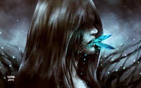 Картинка девушка, лицо, бабочка, аниме, арт, капюшон, nanfe