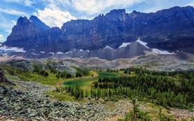 Картинка Yoho National Park, камни, Канада, скалы, деревья, горы, озеро