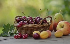 Обои лето, вишня, корзина, яблоко, фрукты, смородина, груша. абрикосы