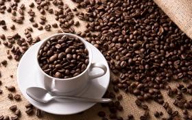 Обои кофе, зерна, кружка, чашка