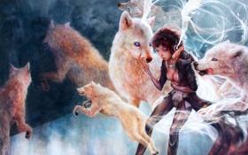 Картинка волк, стая, арт, девочка