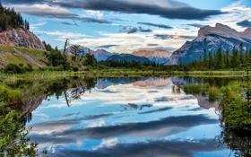 Обои облака, деревья, горы, озеро, отражение, Канада, Banff National Park