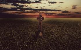 Картинка поле, трава, крест, Celtic Cross, Кельтский крест