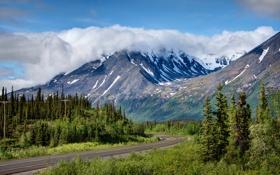 Обои дорога, лес, облака, деревья, горы, Аляска, США