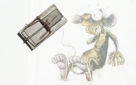 Картинка страх, мышь, мышеловка
