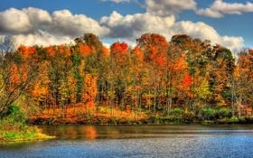 Обои осень, природа, река, краски, HDR