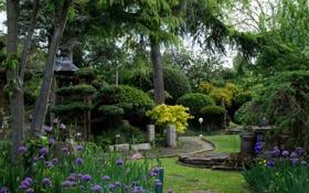 Картинка деревья, цветы, дизайн, парк, камни, сад, фонарь