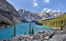 Картинка лес, небо, облака, деревья, горы, природа, озеро