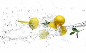 Картинка вода, брызги, лимон, белый фон