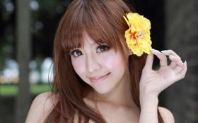 Картинка цветок, девушка, лицо, азиатка