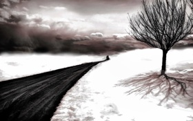 Картинка дорога, снег, дерево