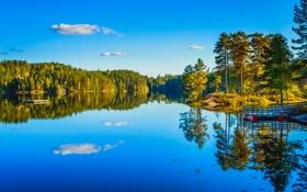 Обои осень, лес, небо, деревья, озеро, причал