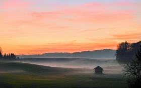 Картинка пейзажи, поле, домик, утро, туман