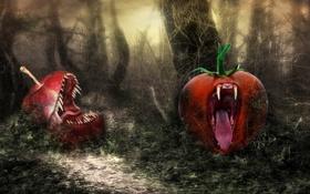 Обои лес, яблоко, хищники, помидор, дремучий
