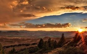 Картинка лес, небо, солнце, облака, лучи, пейзаж, закат