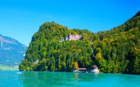Обои деревья, дома, горы, Brienz, озеро, Швейцария, красота