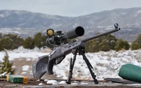 Картинка оружие, оптика, винтовка, снайперская, Мосина