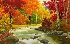 Обои лес, деревья, река, камни, листва, Осень